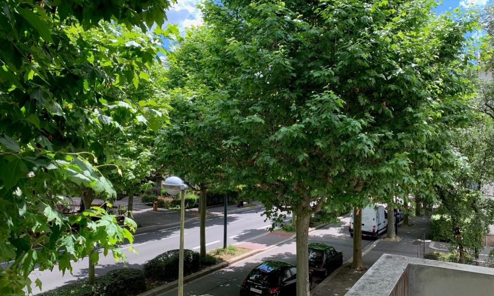 Vente appartement 4 pièces à Annecy - réf. 4050 DAL - Photo 1